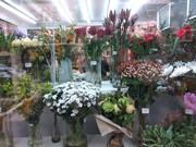 Продажа магазина цветов